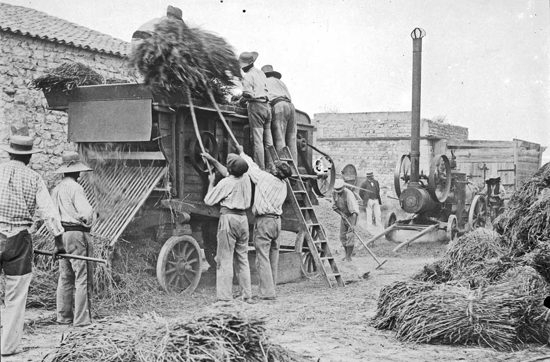 Scène de moissons vers 1905 - Source : association AIDA